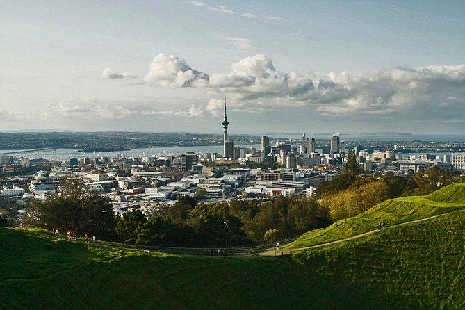 Excursión privada: Escapada de un día a las cuevas de Waitomo desde Auckland, Auckland, NUEVA ZELANDIA