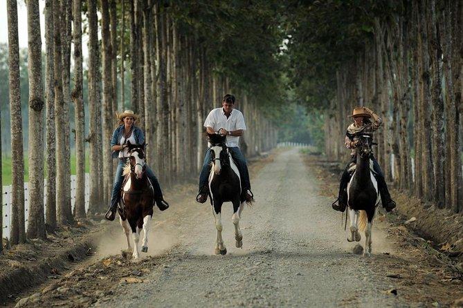 Escapada de un día a la Hacienda La Danesa con equitación y almuerzo, Guayaquil, ECUADOR