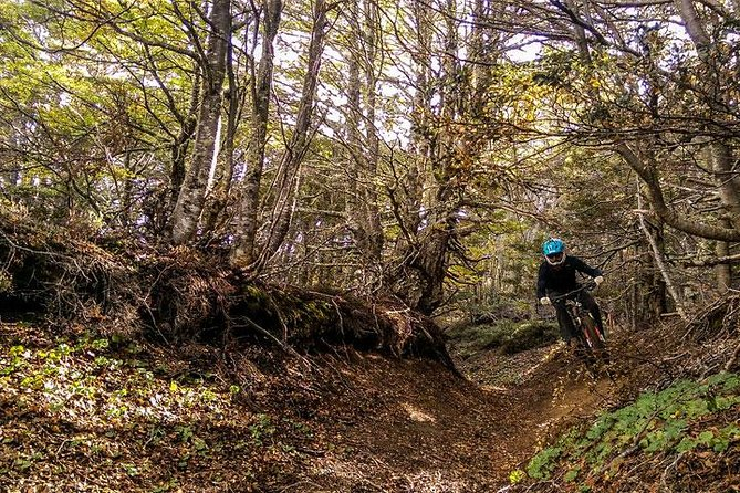 Mountain Bike in Patagonia, Small Groups, Local Guide<br><br>This track has it all! It is a challenging adventure across an a fairy-tale landscape of fissures, old forest and moss. The start is less than 20 minutes  drive from downtown Punta Arenas sets in front of the Mallelans strait and sorrounded by the paatgonian mountains. Great scenery, 90% downhill, technical sections, flowing singletrack who ends in Cerro Mirador, our local skiing center, with an amazing view from where Darwin was sailing.