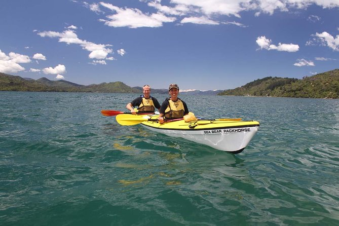 Half day Guided Sea Kayak Tour from Picton, Picton, New Zealand