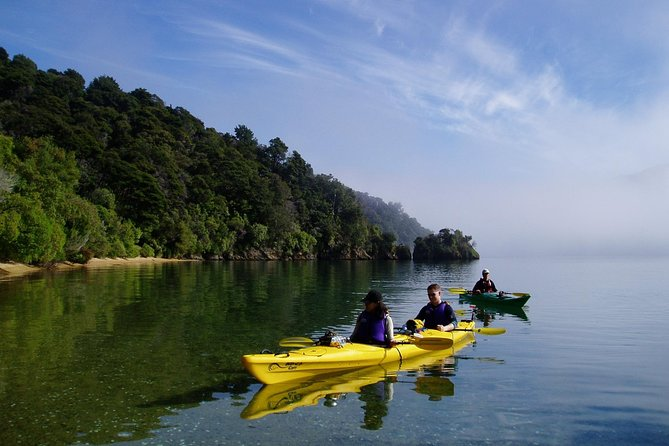 Full day Guided Sea Kayak Tour from Picton, Picton, New Zealand