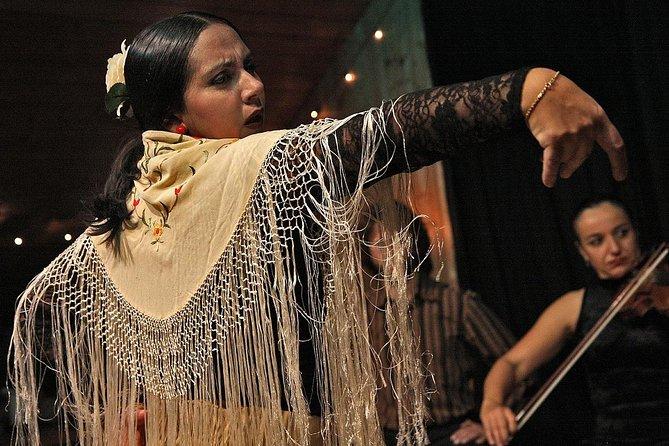 MÁS FOTOS, Flamenco Show