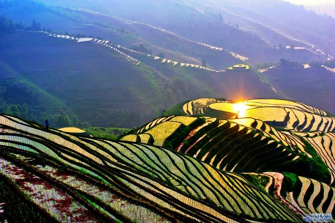 This 8-hour bus tour covers one of the highlights of Guilin, the famous Longji rice terraces. Discover the unique cultures and traditions of Guilin's tribal minorities, like the long-haired Yao women of Huangluo Village, and their distinctive architecture. Hike along the spine of Longji, or 'Dragon's Backbone', through stunning rice-terrace landscapes and pass local Zhuang and Yao villages. Enjoy lunch at a local farmer's restaurant.<br> • At the Long Hair Show at Huangluo Village, please be careful not to go to the stage to join their WEDDING GAME as you might be asked to pay CNY50 to buy a gift for the actress.<br> • Traffic jams are expected during holiday seasons, so your time at the scenic spot may be shortened. In this case, you will have no time to climb and have to take cable car instead.