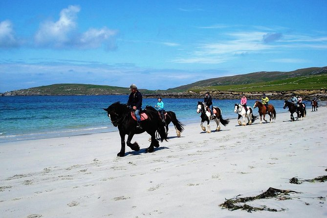 Spend an unforgettable day exploring Omey island and beach in Connemara on horseback. Your guide will introduce you the thrill of beach horse riding along the Wild Atlantic Way on this popular 2.5 hour equestrian escape. This private experience which starts at our renowned stables, Depending on your level of experience you can canter or gallop across the white strand. Novices are kept safely in walk and trot. takes you on a ride to Omey Island that is punctuated by dramatic land and seascapes, historical sites, wild rugged landscapes and islands flung out to sea. <br>Our riding stables are Connemara's premier beach trekking centre, and this trek is suitable for beginner to advanced riders. There will be a short assessment before leaving with up to 2 guides depending on the number in the group and the level of experience. Available every day of the year. Pax: Min 1, Max 10.