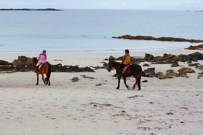 Explore a unique Connemara island beach on horseback and experience the thrill of beach horse riding along the Wild Atlantic Way on this popular 3-hour equestrian escape. This Omey Island trek is punctuated by dramatic land and seascapes, historical sites, wild rugged landscapes and islands flung out to sea. Treks are suitable for beginner to advanced riders and includes a short assessment before leaving with up to 2 local guides. Depending on your level of experience you can canter or gallop across the white strand. Novices are kept safely in walk and trot.