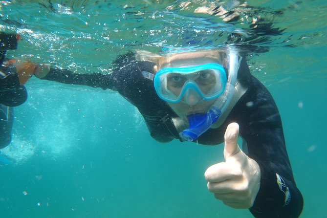 Snorkeling for the half day is perfect for observing the seabed.<br><br>Schedules: 9am to 12pm
