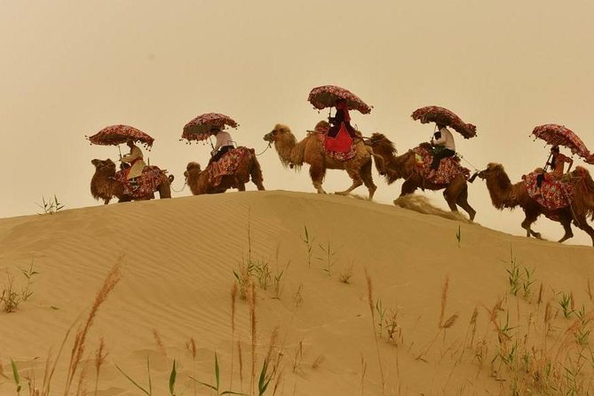 While in Kashgar,why not to join a full day tour to explorehe Taklamakan desert which is the second largest shifting desert in the world? The Dawakoldesert isonly 2.5 hours driving from Kashgar.Once arrive at the Dawakol Desert, you will have enough time to enjoy the surroundings, you also can choose the option to ride the camel to explore the desert or ride the desert jeep going up and down or maybe both.There is a lake next to the desert,where you can take a walk aroundor swim.Your tour includes informative commentary from your guide, private vehicle, entrance fee, and lunch