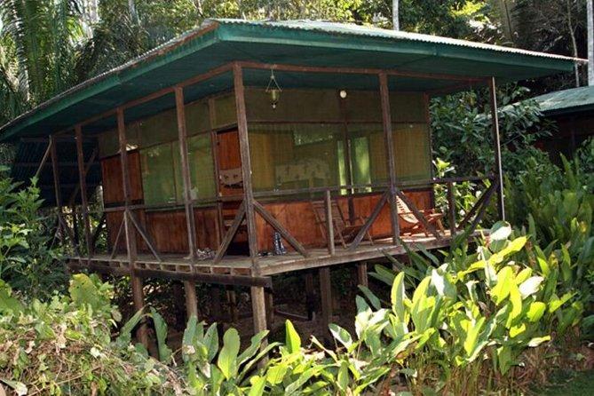 3-Day Amazon from Puerto Maldonado with Eco Lodge Accommodation, Puerto Maldonado, PERU