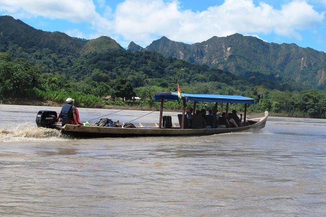 MÁS FOTOS, 6-Day Madidi and Pampas Amazon from La Paz