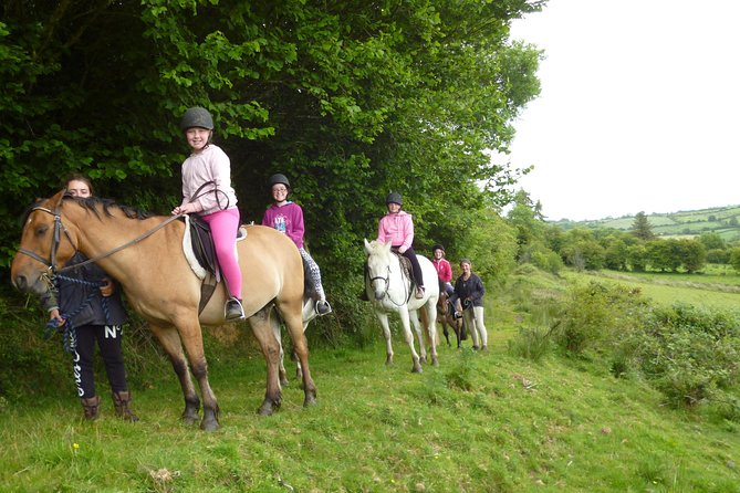 This family run riding school has been guiding locals and tourists alike through the beautiful and historic landscape for 20 years. We specialise in gentle horsemanship techniques. We are one of the few riding establishments that charities will re-home to, because of the caring way we work with horses. We are also unique in having access to hundreds of acres of unspoiled mountain pastures which contain archaeological remains dating back thousands of years, as well as native wildlife and rare flowers. Our scenic private pony trek goes up and down hill through open meadows. It is suitable for families and all levels of rider, with basic instruction included. Start time at your convenience