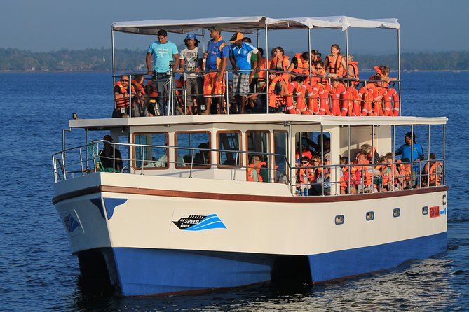 Embark on a thrilling 6-hour whale watching cruise along Sri Lanka's southwest coast. Depart from your hotel in Galle or Unawatuna early in the morning and strap on your life vest on a 50-foot (15-meter) vessel. Enjoy complimentary breakfast and the beautiful ocean while spotting blue whales, humpback whales, killer whales, whale sharks, dolphins, or sea turtles.