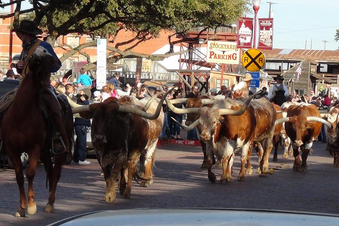 MÁS FOTOS, Half-Day Guided Best of Fort Worth Historical Tour