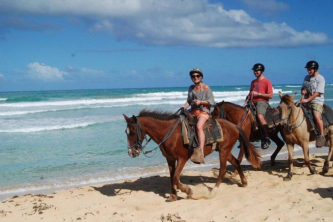 2-Hour Horseback Riding Adventure from Punta Cana, Punta de Cana, DOMINICAN REPUBLIC