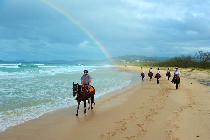 The beach ride is a one and a half hour horse ride along Rainbow Beach, which is located approximately 3 hours north of the Queensland capital of Brisbane. Rainbow Beach is rated in the top five most incredible beaches in the world and the third most colorful beach in the world,  with views of heritage listed Fraser Island and the iconic coloured sands of Double Island Point. <br><br>All levels of riding experience are catered for from novice to experienced riders and our team of friendly and trained guides will run through a riding demonstration before each ride.