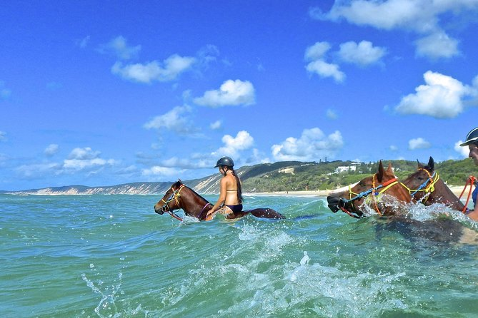 The 'Swimming Ride' for advanced / experienced riders only to take their horse for a ride into the ocean. You literally immerse yourself into nature by swimming with your horse while whales breach on the horizon and dolphins play nearby. <br><br>Rainbow Beach is rated in the top five most incredible beaches in the world and the third most colorful beach in the world, with views of Fraser Island and the colored sands of Double Island Point, this is an incredible lifetime experience<br><br>This is a bare back ride for advanced/experienced riders