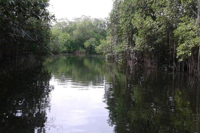 Private YS Falls and Black River Safari from Runaway Bay, Runaway Bay, JAMAICA
