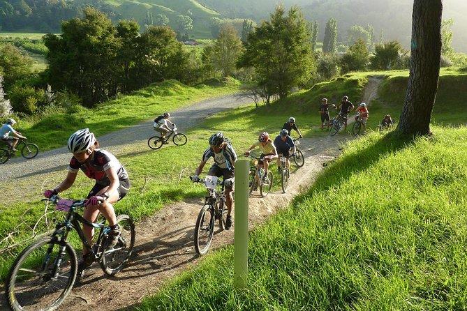 Mountain Bike Hire, Napier - Self Guided, Napier, NOVA ZELÂNDIA