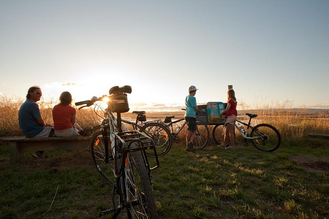 Sunset Cycle Tour of Ahuriri Estuary including Winery - Guided, Napier, New Zealand