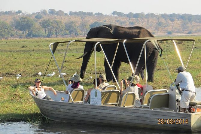 Chobe day trip from Victoria Falls. Experience the wild game sightings on the Chobe River by boat. Tea and coffee is served just before you commence your day activity. The drive from Victoria falls goes through the park and there is a chance of seeing the wildlife. Those traveling with the Kids 16yrs and below must have birth certificates for the kids
