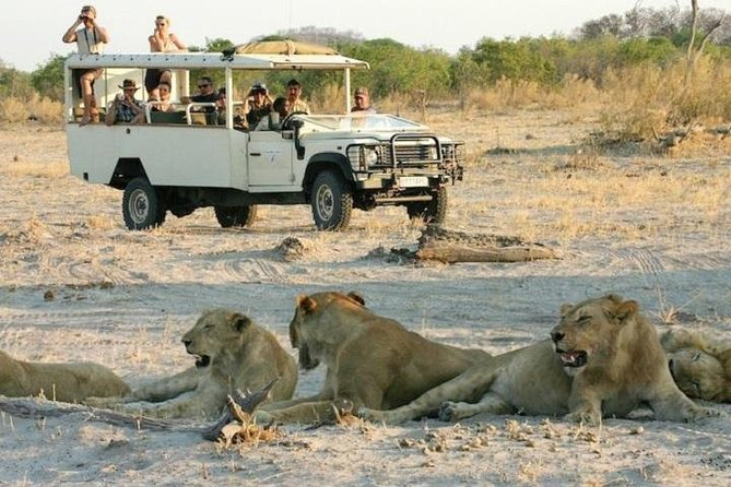 Experience two 3-hour activities in the famous Chobe National Park. Get the best of both worlds in specially adapted open 4x4s and by boat. This is a unique opportunity to experience some of the best game viewing in Africa close up.