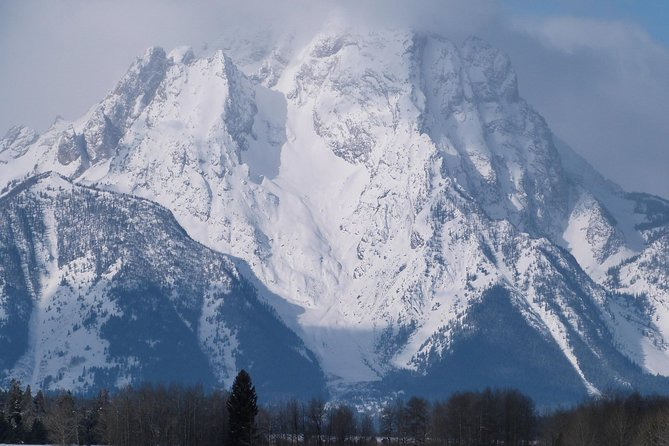 This four hour interpretive  tour will focus on the varied wintering wildlife found in and around Grand Teton National Park and the National Elk Refuge.  We will have the opportunity to view Moose, Bison, Elk, Deer, Big Horn Sheep, Big Horn Sheep, Bald Eagle and more in their natural habitat.  In addition to the fantastic wildlife to be encountered, the beauty of the Grand Teton Mountain range will also be a highlight of the trip.  Small group size will ensure a personalized tour and exceptional customer service.  With a start time at 8:30am or 1:30 pm you will have time to plan other activities in the day.