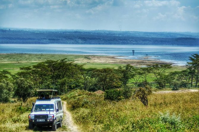 Enjoy this 11.5-hour tour of Lake Nakuru National Park, home to one of the most remarkable wild bird populations in all of Africa. Observe the wildlife on a game viewing drive, and be on the lookout for the park's amazing flamingos. Note that this park is a Natural RHINO sanctuary which is an endangered species and also one of the BIG FIVE animals. <br><br>Enjoy an optional 1-hour boat ride on Lake Naivasha as well before being transported back to your Nairobi hotel.
