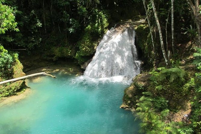Excursão particular em Blue Hole e Secret Falls, Montego Bay, JAMAICA