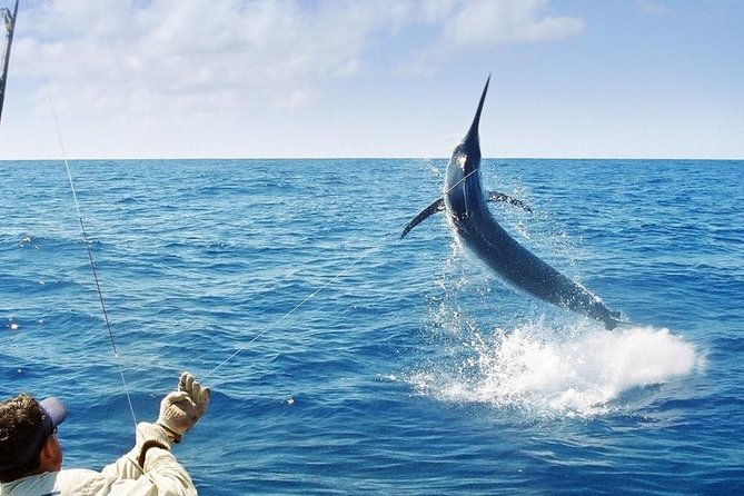 Deep Sea Fishing on Jamaica's North Coast is generally good year round. Our private Ocho Rios fishing charter provides an experienced and knowledgeable captain and crew with solid reputation for landing the big fish.