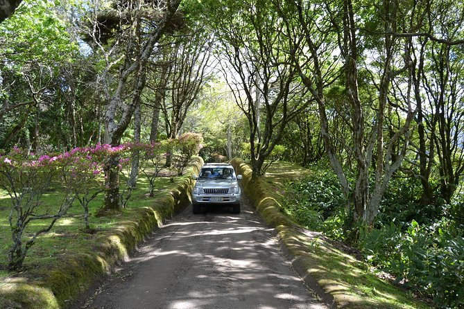 Enjoy this 8-hour tour which can be tailored entirely to your needs and preferences. Use a 4x4 and skilled guide/driver to explore Azores, Portugal at your own pace.