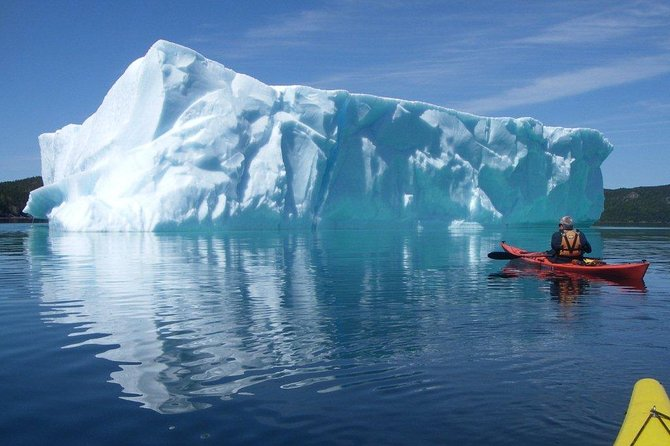 On this tour, you'll tow your kayak to a remote location to paddle back to Trinity. Travel through spectacular seascapes and sea caves to Trinity itself or to a predetermined pickup point based upon wildlife viewing opportunities (whales in particular) and sea state.