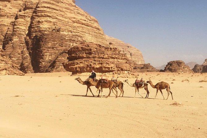 SOUTH JORDAN HIGHLIGHTS- Private Tour From Aqaba to Wadi Rum and Petra in 3 Days, Petra, JORDANIA