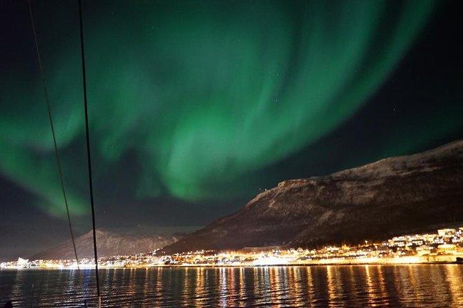 Northernlights - Luxury Yacht Arctic Queen, Tromso, NORUEGA