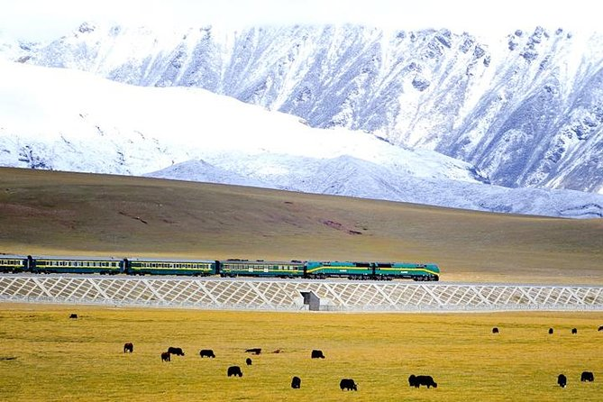 Enjoy the experience of visiting Mount Everest. It will be a lifetime memory for you to stay overnight in the Base Camp. And the great sunset and sunrise at the top of the world will ensure you maximum comfort. Xining is considered as the beginning point of Qinghai-Tibet Railway Railway. You will take a train to Lhasa from Xining and witness the most beautiful scenery outside the train window: land of snows, vast desert, boundless grassland, snow-capped mountains and stunning lakes. This tour is highly recommended because tourists have enough time on the train to acclimate the high altitude gradually as the altitude rises, and then tour to EBC.