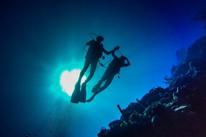 MÁS FOTOS, Excursión de día completo de buceo en Isla Catalina desde Bávaro