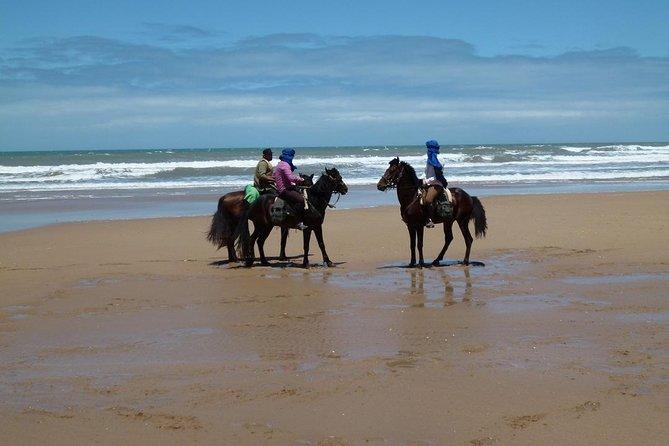 MÁS FOTOS, 3 hours horse riding at Essaouira