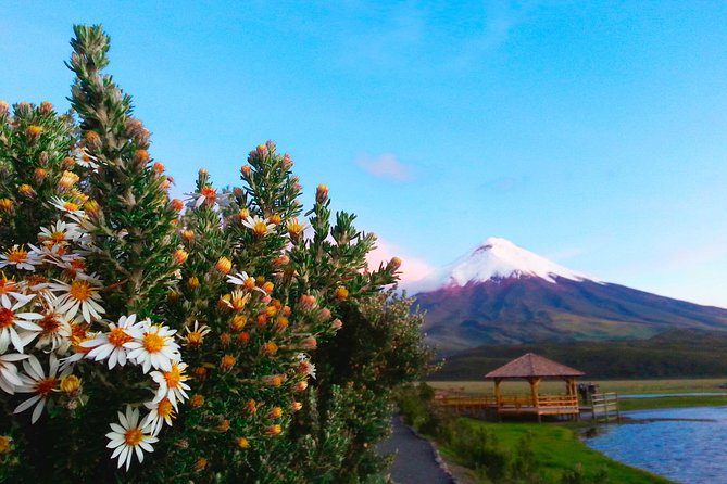 Within the Cotopaxi National Park is the active Cotopaxi volcano, an elevation of 5,897 meters above sea level located in the Cordillera de Los Andes and an exceptional variety of flora and fauna species.