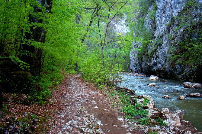 Day trek: Nature and wilderness in Varghis Gorges, Bucarest, RUMANIA