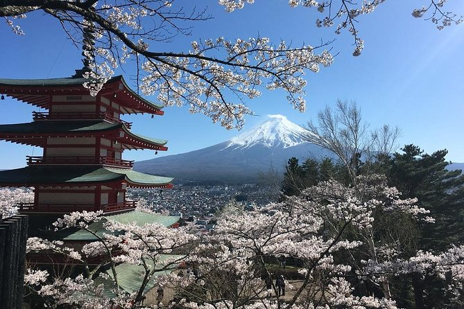 A full day to take the best shots of the scenic Mt Fuji and have cultural experiences.<br><br>In this activity you can choose on either spending the day around the most popular Lake Kawaguchi and five lakes of Mt Fuji, starting from a perfect shot at the Arakurasengen Park for a panoramic view of Mt Fuji and the five-story pagoda on your background etc,. The other choice will be Hakone well-known place for its hot spring resort, Hakone Shrine with its torii gate standing on the Lake Ashi where cruising is also recommended and ride a ropeway to reach for another scenic view from 1327 meter high.<br><br>Your guide will be picking you up at your requested central location in Tokyo at 8:30 am.<br><br>Lunch will be served with the local traditional dish of the region at your expense.<br><br>Please tell us how you would like to spend your day and we will be happy to give you the best of it.