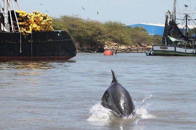 Excursión en barco del Canal del Morro y Playa Varadero desde Guayaquil., Guayaquil, ECUADOR