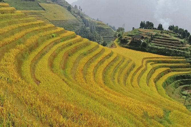 2-Day Longsheng Hot Spring Private Tour Combo Package Including Longji Rice Terraces and Long Hair Village, Guilin, CHINA