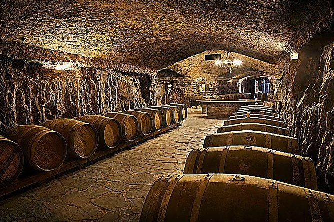 Spain is widely famous for its wines' high quality, and the cradle of these wines, the land that provides its name to the apellation of La Rioja, is not far from our city. Enjoy a visit to a wine cellar (bodega), having a relaxing walk through the wineyards, learning the wine-making process from the grape harvest to the maturation and finishing the experience with a wine tasting  with a expert and a complete lunch with local products and the best wines.<br><br>Definitely the best way to know the basics of the best Spanish wines!