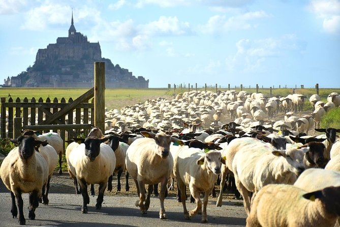On this 3-hour walking tour, soak up the beauty of Mont-St-Michel in a traditional and authentic way with a guide who shares with you the history of this iconic monument and shows you interesting places around the village. You will also explore the areas around the rock island, plus receive insider tips about the area if you plan on spending more days either in Normandy or in Brittany.