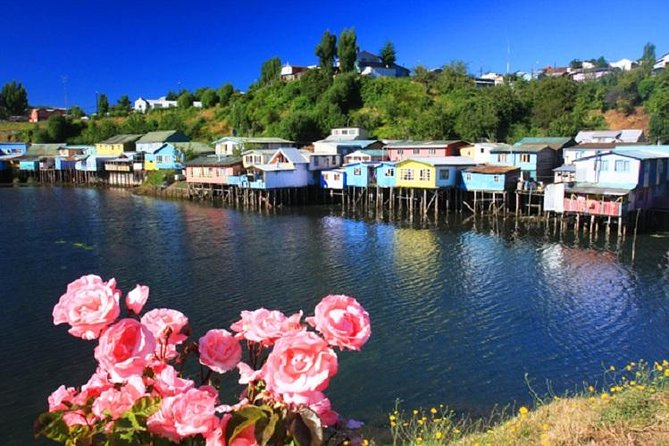 A full day tour visiting the northern part of the mythical island of Chiloé, its stilted houses, its markets and the churches declared as World Heritage sites by Unesco.