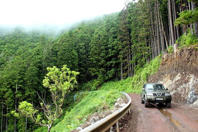 Full-Day 4WD Tour to Nordeste, ,
