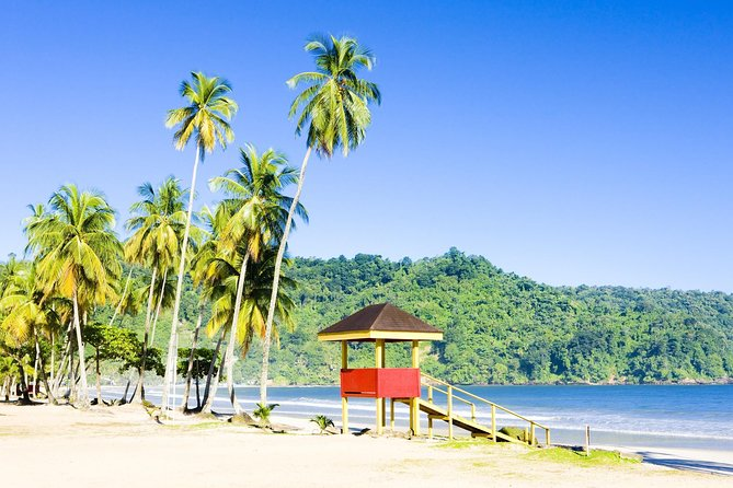 The main destination of this sightseeing tour is Maracas Beach, the most popular beach on the North coast of Trinidad. After a historical and architectural view of Port of Spain, you'll journey via the Saddle Road to this beautiful getaway. Magnificent views await you on this 3.5 hour journey.