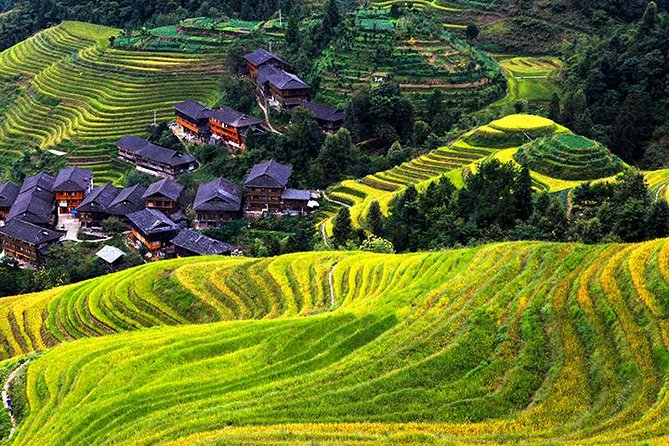 Private Day Tour Visiting Longji Rice Terrace with PingAn Zhuang Minority Village and Sanjie Liu Tea Plantation, Guilin, CHINA