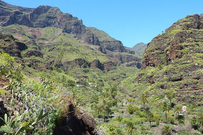 Combined Hiking Route in The Garajonay National Park and La Gomera Ravines, San Sebastian de La Gomera, Espanha