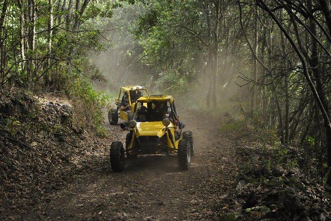 3-hour Buggy Route to Cumbre Nueva in La Palma, La Palma, ESPAÑA