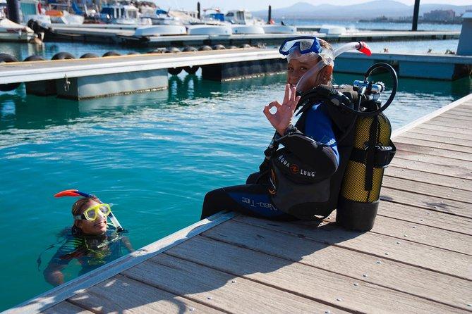 2-hour Scuba Diving Baptism in Caleta de Fuste, Fuerteventura, Spain