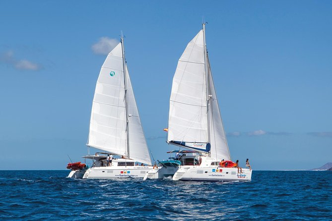 Enjoy this 4-hour trip from the Corralejo pier to Isla de Lobos aboard a wonderful boat. You will have snorkelling, fishing and paddle equipment at your disposal.besides. Pick-up service is included.